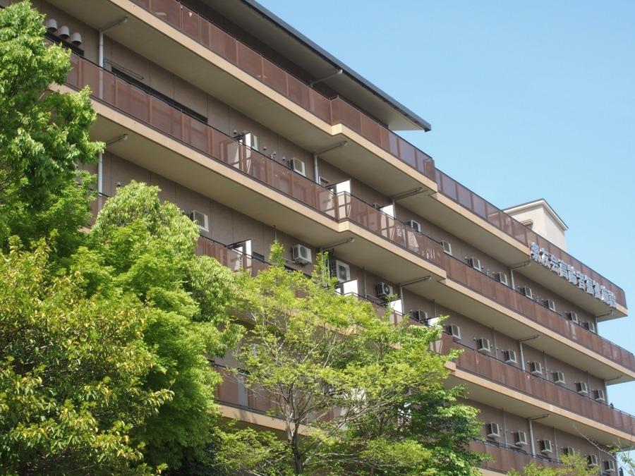 白楽荘居宅介護支援事業所の画像