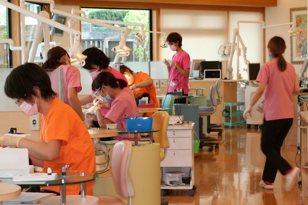 恵 聖 会 クリニック 料金案内|恵聖会クリニック|大阪の美容外科・美容皮膚科