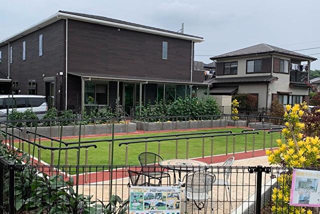 ディサービス ルイーダの家ももの画像
