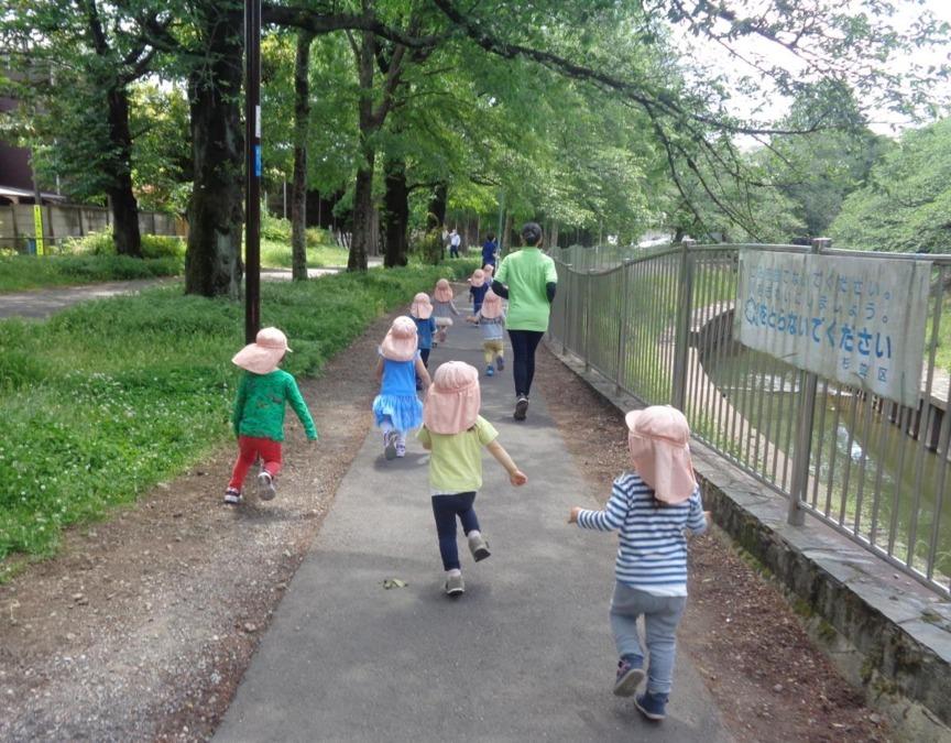 こども愛々保育園 阿佐谷南(保育士の求人)の写真1枚目:お天気の良い日にはお散歩に出かけます。 お散歩が大好きな子どもたちです。