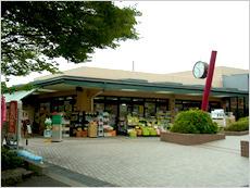 ファーマシーオカムラ薬局 ときわ台店の画像