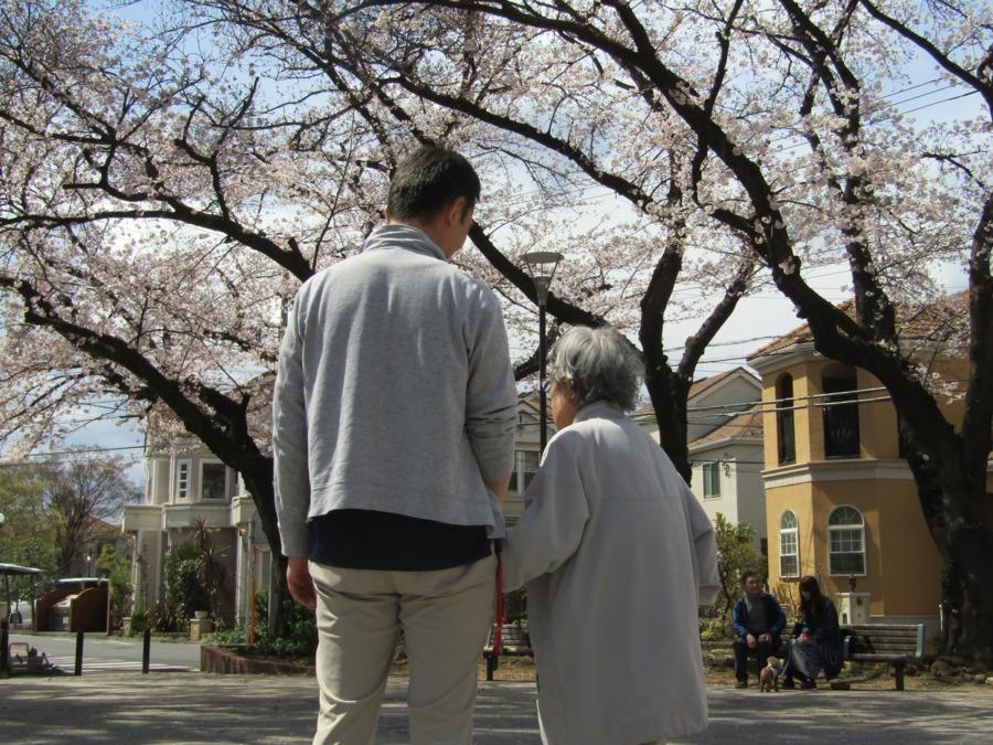 介護付有料老人ホーム シニアフォレスト横浜戸塚(生活相談員の求人)の写真8枚目:お花見外出レク