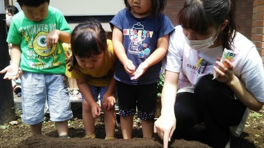 社会福祉法人新宿会 新宿保育園(認可保育園)の画像