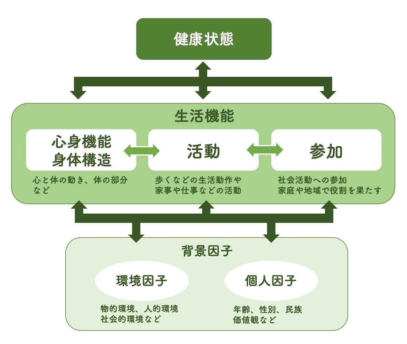 ICF 国際生活機能分類の構成